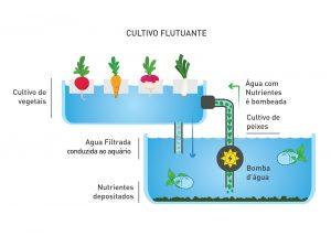 Cultivo Flutuante
