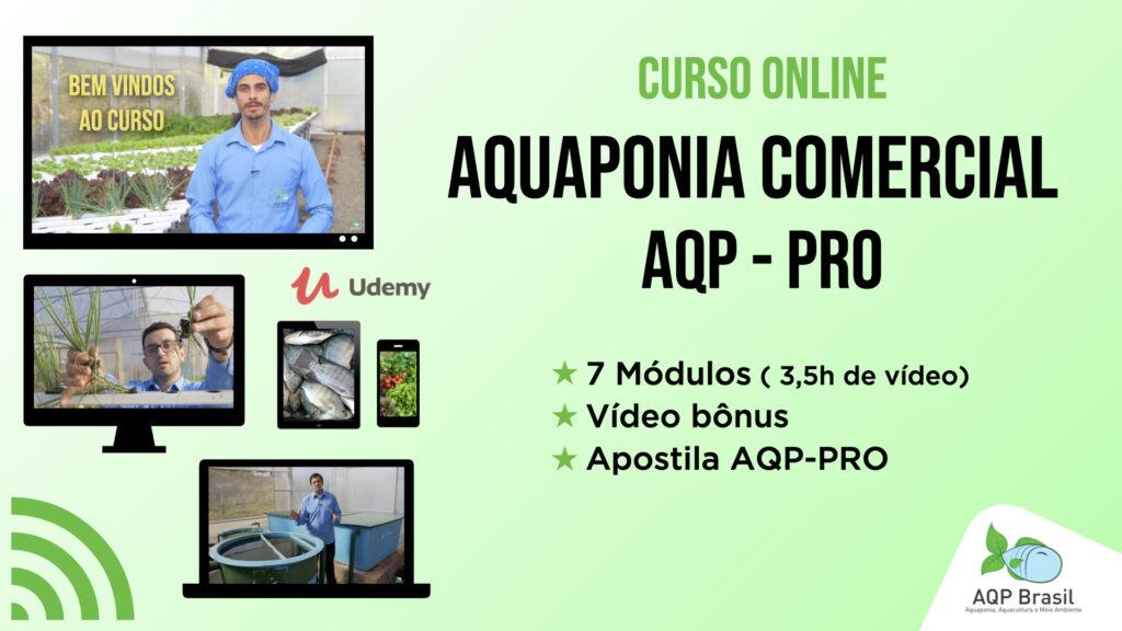 AQP_CursoOnline_Capa_V3